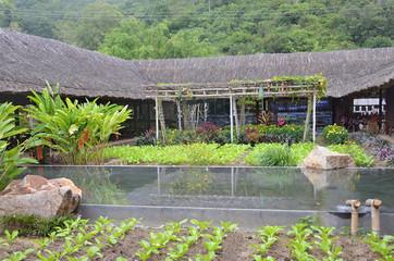 Вьетнам, Нячанг, грязевые минеральные источники I resort