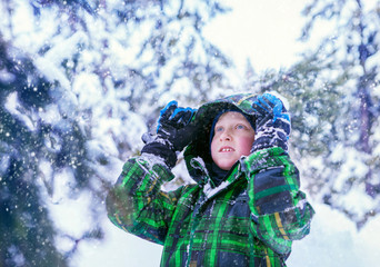 Boy in snowy forest