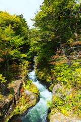 Flow of Yukawa river