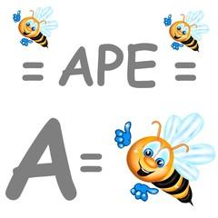a ape