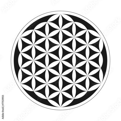 flower of life geometrical pattern stock image and royalty free rh fotolia com flower of life vector image flower of life vector download