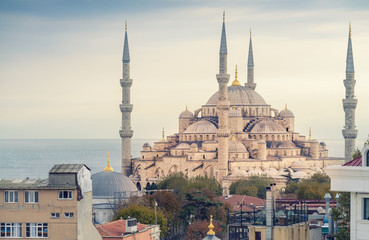 Magnificence of Blue Mosque, Istanbul