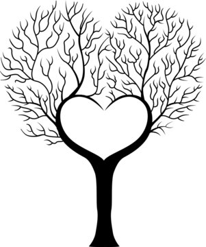 Tree branch in shape of heart