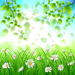 Flower and leaf background