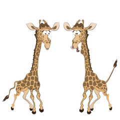 Caricature of two fun giraffes