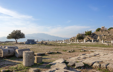 Temple of Athena view