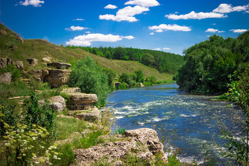 Summer landscape near the river