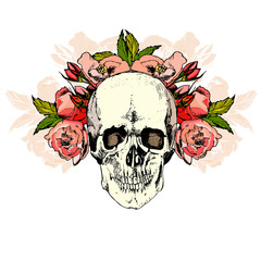 illustration with skull. hand draw.