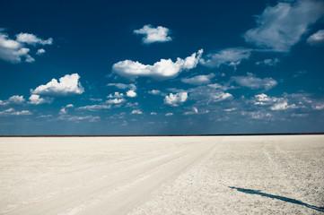 Makgadigadi Pan, Botswana, Africa