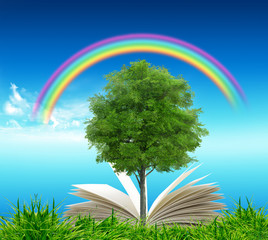 Open book in green grass over blue sky and rainbow