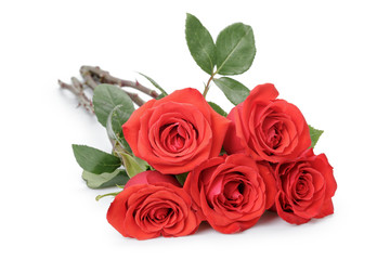 Five red roses isolated on white