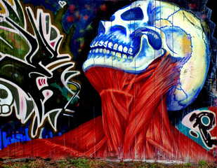 graffiti of a skull