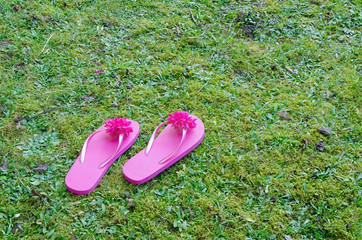 two playful pink flip-flops on green grass