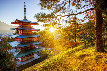 Wall Mural - Chureito Pagoda with sun flare, Fujiyoshida, Japan