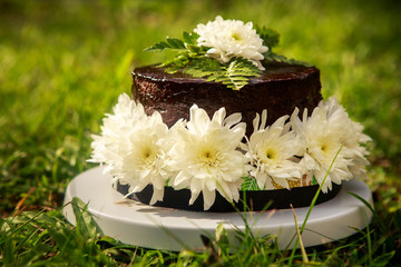 chocolate delicious cake
