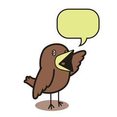 Talking bird 01
