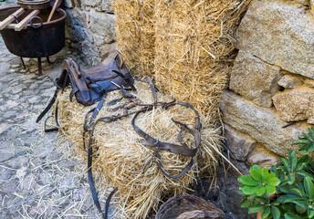 Saddle and bridle