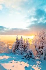 Fototapete - Snowy winter landscape in sunset