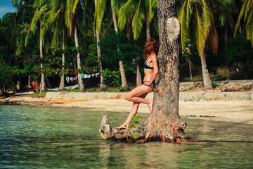 Sexy young woman in bikini by tree on tropical beach