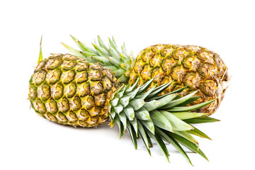 Pineapple fruit isolated on a white background.