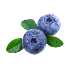 blueberries in close up macro