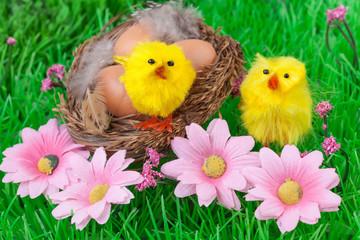 Easter eggs green grass yellow chicks