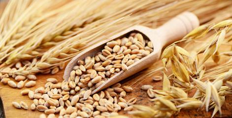 Getreide Körner