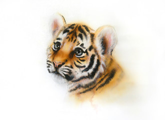 adorable baby tiger head looking up on white background