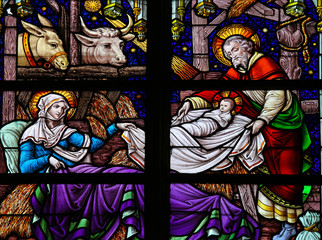 Wall Mural - Nativity Scene Stained Glass