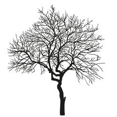 realistic silhouette of tree. vector