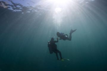 Mermaid meeting a diver underwater