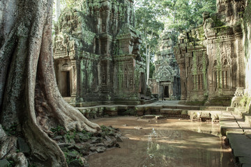 Wall Murals Place of worship The ruins of Ta Prom Temple, Siem Reap, Cambodia.