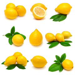Collection lemon with leaves