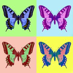 pop art swallowtail (Papilio machaon)