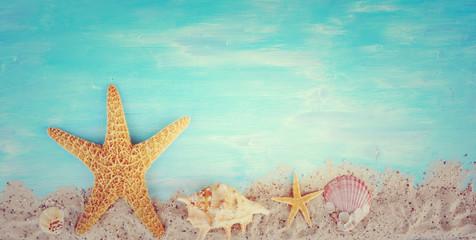 Wall Mural - Hintergrund - Seestern und Muscheln