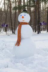 snowman orange scarf