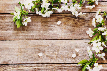 Background with bright pink flowers on white wooden planks