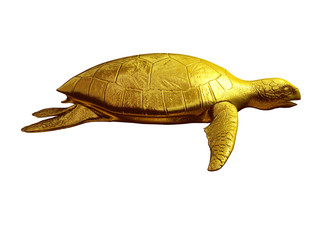 sea turtle, side view