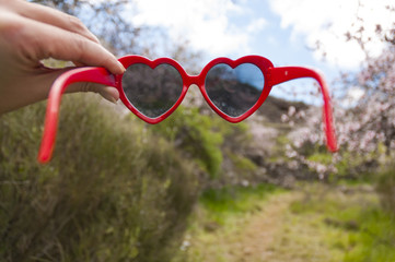Red heart shaped sunglasses in blossoming almonds trees