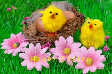 Easter Nest Yellow Chick Happy Easter