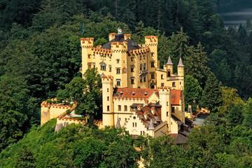 Fotobehang Kasteel Hohenschwangau Castle