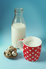 Vintage still life with red cup of milk and antique bottle