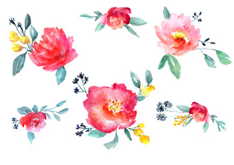 watercolor flowers set
