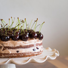 Chocolate Sponge Cake with Cream and Cherries on the Cake Stand