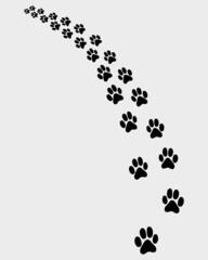 Black trail of cat, turn left, vector