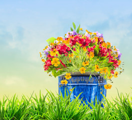 flowers in blue pot in grass on sky background