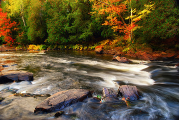 Autumn River Background