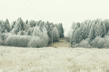 winter landscape nature without people