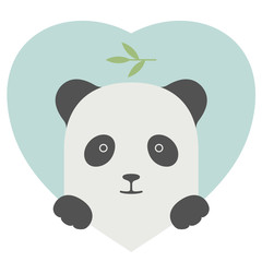 Animal set. Portrait of a panda in love over heart backdrop