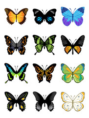 Vector butterflies icon set